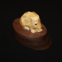 Amber souvenir Boar